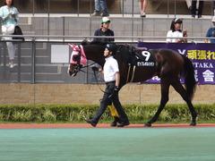20160710 中京10R 木曽川特別(1000) ビップレボルシオン 08