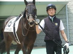 20190511 東京5R 3歳未勝利 ホウオウヒミコ 11