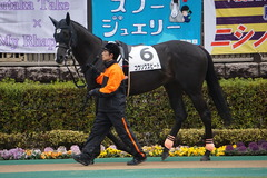 20200216 東京6R 3歳1勝クラス コウソクスピード 06