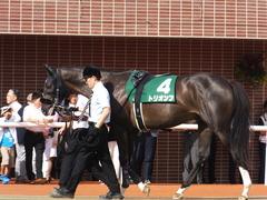 20160903 札幌11R 札幌2歳S(G3) トリオンフ 03