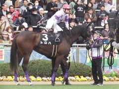 20190323 中山9R ミモザ賞 3歳牝馬(500) トロハ 11
