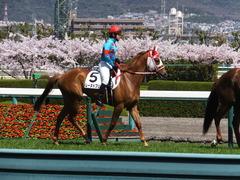 20150404 阪神4R 3歳未勝利 レーヌドブリエ 14