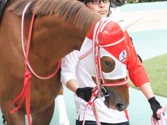 20151010 東京9R 山中湖特別 レーヌドブリエ 09