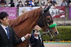20200215 東京11R クイーンC(G3) 3歳牝馬OP ホウオウピースフル 04
