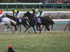 20141228 中山10R 有馬記念 サトノノブレス 10
