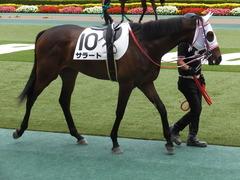 20170611 東京6R 2歳牝馬メイクデビュー サラート 12