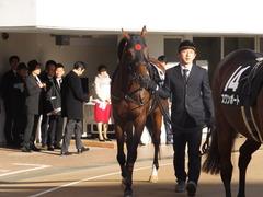 20161224 中山10R クリスマスカップ(1000) オウケンブラック 10