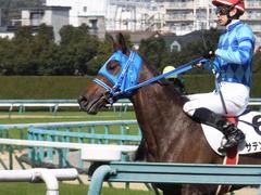 20170225 阪神4R 3歳未勝利 サテンドール 24