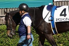 20191110 東京2R 2歳牝馬未勝利 ミヤコシャンティ 06