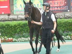 20190608 東京6R 3歳牝馬未勝利 ホウオウヒミコ 06