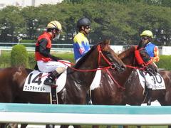 20170910 阪神3R 3歳未勝利 フェアチャイルド 31