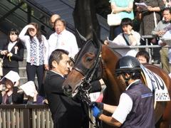20141011 東京8R ヴィルトグラーフ 05