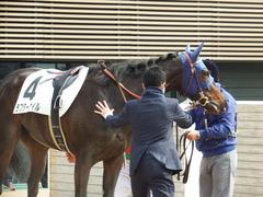 20180318 中山1R 3歳牝馬未勝利 ラプターゲイル 17
