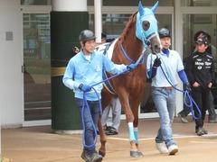 20180922 中山2R 2歳牝馬未勝利 ヴァルドワーズ 02