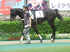 20190622 東京3R 3歳未勝利 ショウナンサジン 09