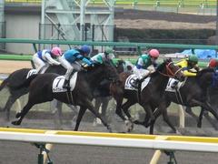 20160130 東京3R 3歳未勝利 カズノメガミ 15