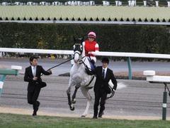 20151227 中山10R 有馬記念(G1) ゴールドシップ 14
