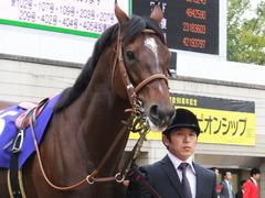 20151122 京都11R MCS(G1) モーリス 05