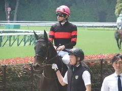 20190511 東京5R 3歳未勝利 ホウオウヒミコ 17
