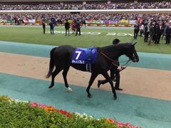 20161030 東京11R 天皇賞・秋(G1) サトノノブレス 16