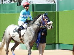 20180304 中山5R 3歳牝馬未勝利 プラチナベール 12