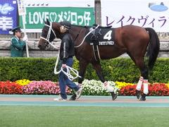 20151031 東京10R 赤富士S ショウナンアポロン 02
