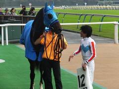 20151017 東京4R 2歳メイクデビュー モーゼス 17