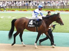 20150516 東京9R 夏木立賞 プエルト 13