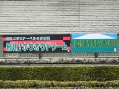 20180128 東京10R 早春S(1600) ホウオウドリーム 01