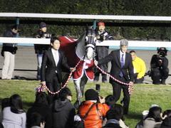 20151227 ゴールドシップ 引退式 10