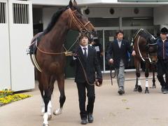 20150125 中山10R 若潮賞 モーリス 07