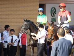 20140928 新潟11R オールカマー サトノノブレス 13