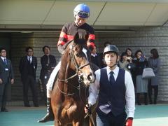 20190216 東京9R フリージア賞 3歳500万下 ホウオウサーベル 11
