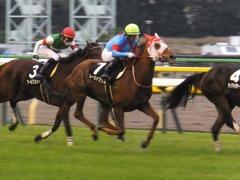 20171118 東京10R ユートピアS(牝1600) レーヌドブリエ 16
