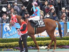 20170211 東京9R テレビ山梨杯(牝1000) レーヌドブリエ 19