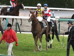 20150321 中山10R 韓国馬事会杯 ランドマーキュリー 09