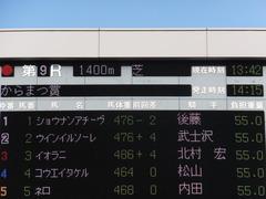 20131117 東京 ショウナンアチーヴ 01