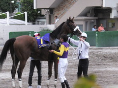 20140915 大井11R 東京記念 ユーロビート 20