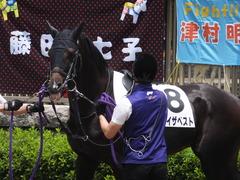 20160612 東京3R 3歳未勝利 ステイザベスト 10