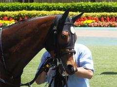 20170506 東京5R 3歳牝馬500万下 ビルズトレジャー 12