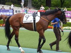 20170618 東京4R 3歳未勝利 ホウオウジャンプ 05