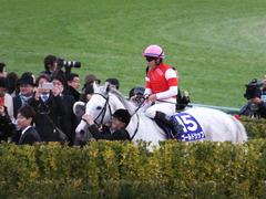 20151227 中山10R 有馬記念(G1) ゴールドシップ 24