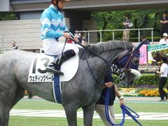 20180609 東京6R 3歳牝馬未勝利 ウェディングベール 14
