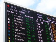 20141228 中山3R トーセンカナロア 01