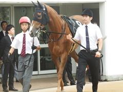 20180930 中山9R サフラン賞 2歳牝馬500万下 ポリアンサ 11