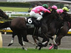 20161008 東京9R 山中湖特別(牝1000) ツクバアスナロ 19