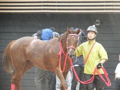 20180929 中山5R 2歳牝馬メイクデビュー オトナノジジョウ 26