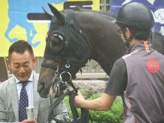 20190622 東京3R 3歳未勝利 ショウナンサジン 14