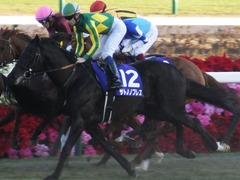 20161225 中山12R 有馬記念(G1) サトノノブレス 11