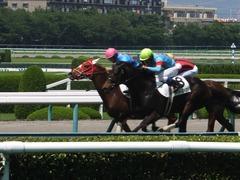 20160618 阪神8R 3歳上牝馬500万下 レーヌドブリエ 23